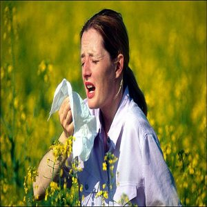 Dấu hiệu của viêm mũi dị ứng và viêm xoang mũi