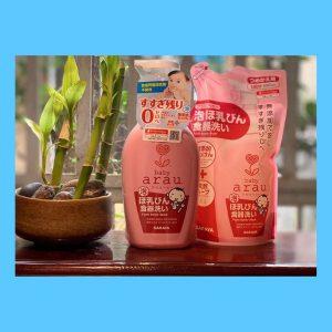 Dung dịch Rửa Bình sữa Arau Baby của Nhật